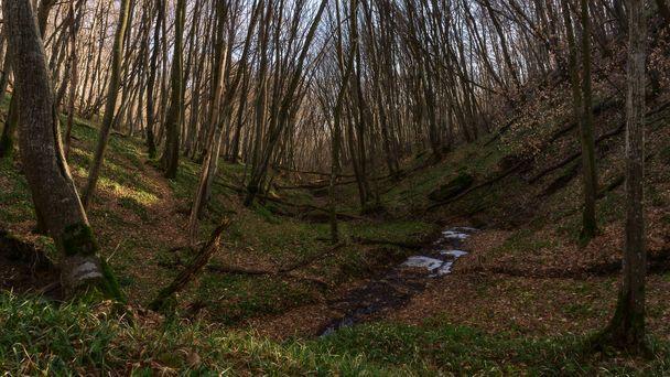 Работы поосушению болота вдоль новоиспеченной дороги вСтаврополе завершены