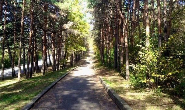 ВПятигорске занимаются восстановлением терренкуров для целебной ходьбы