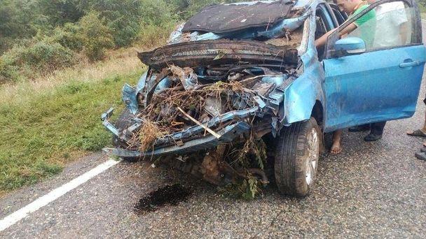 Двое пассажиров погибли при обгоне КамАЗа натрассе Ставрополья
