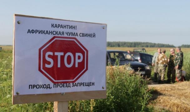 ВКабардино-Балкарии выявлен очаг АЧС